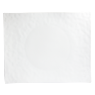 "Bernardaud Digital Plate 12 X 9.6"""