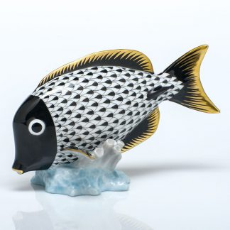 Herend Surgeonfish